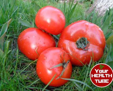 Tomatoes Health Benefits World Healthiest Foods bl