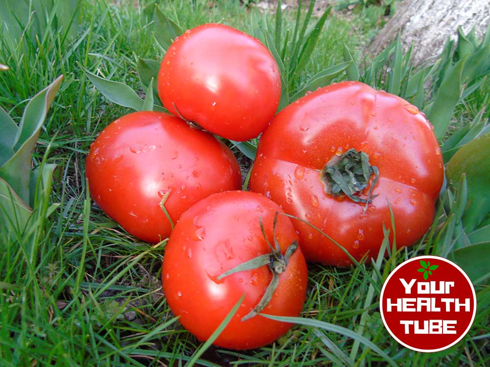 Tomatoes Health Benefits: World's Healthiest Foods!