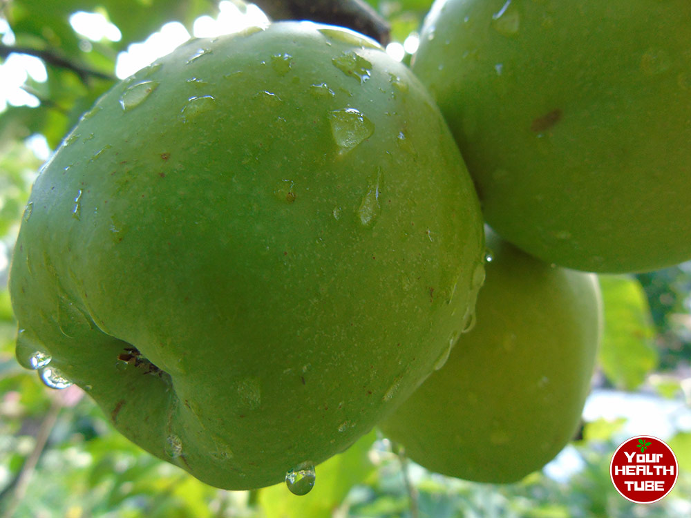 Green Apples: Unique Food for Shiny Teeth