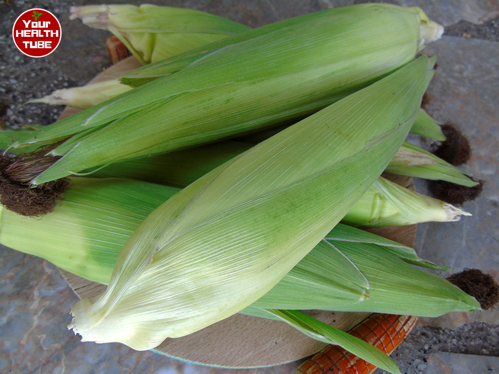 Health Benefits of Corn: Naturally Gluten-Free Food with Surprising Benefits