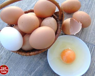 eggs nutrition